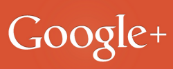 Profilo Google + della Compagnia